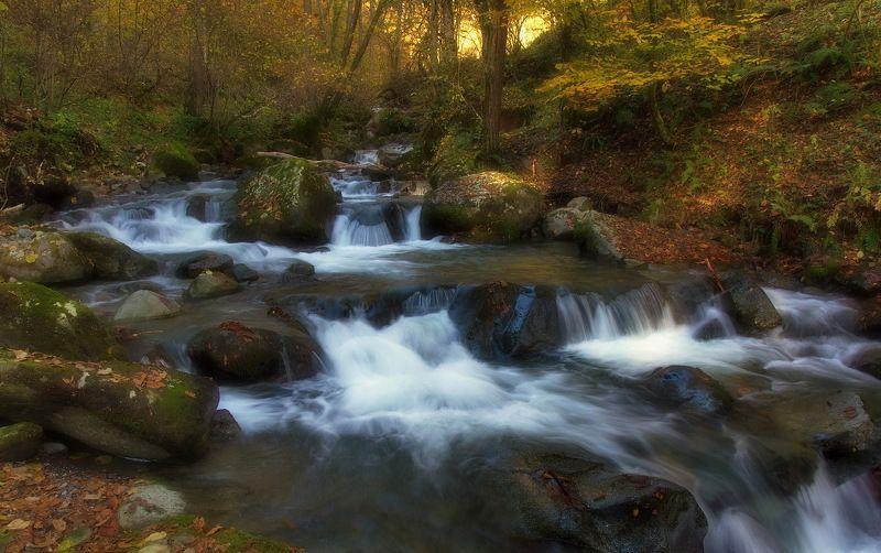 горы река перекаты По реке Монашкеphoto preview