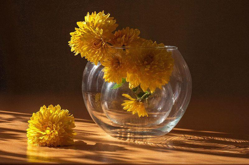 солнечные шарики,,photo preview