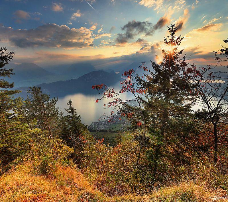 swiss Осенний вечерphoto preview