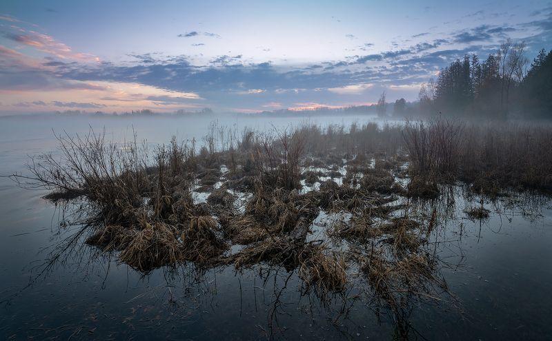 december thaw, lake, ice, fog, sunset, water, reed, декабрьская оттепель, озеро, лёд, туман, закат, вода, тростник December thawphoto preview