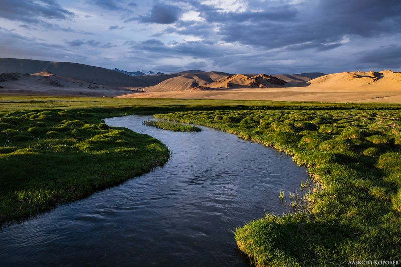 монголия, горы, алтай, закат, ручей, природа, пейзаж, лето, mongolia, mountains, altai, sunset, stream, nature, landscape, summer Горный ручейphoto preview