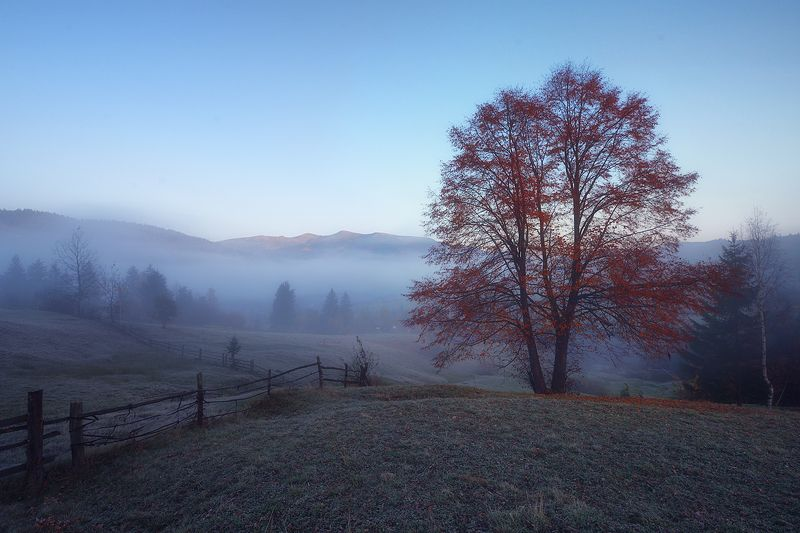 горы, осень, утро, туман Ясиня.photo preview