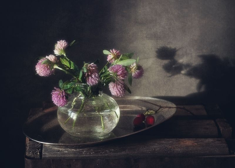 натюрморт,клевер,цветы с клевером...photo preview