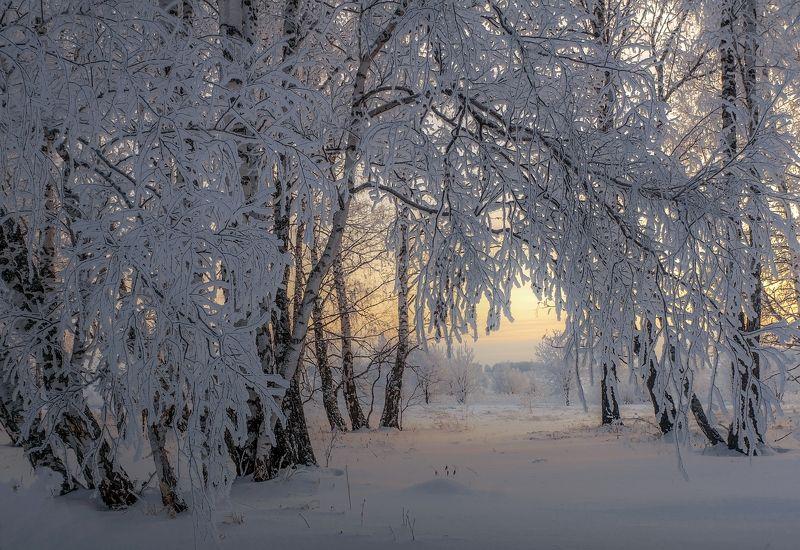 Просто зимаphoto preview