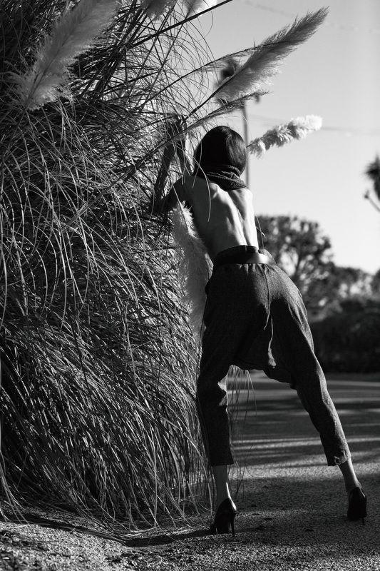 sergioartglalosangelesmalibu editorialphotography photographerlosangeleseditorial blackandwhiteblackandwhitephoto calosangelescalifornia losangelescalifornia laphotographerphotoshootlalosangelesphotographer westhollywoodlaphotographers hollywoo Point Dume, Malibu, CA.photo preview