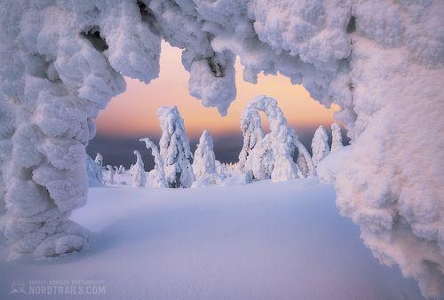 Зимняя сказка на Кандалакшских горках