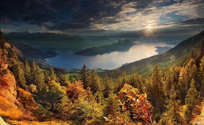 swiss Осенний денёкphoto preview