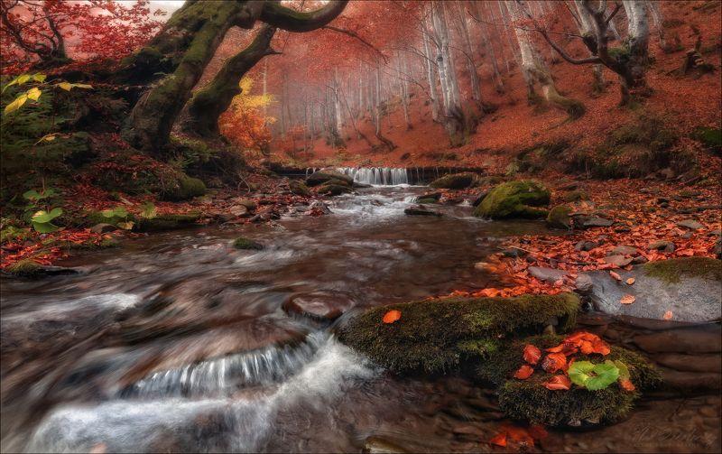 карпаты, украина, осень, горы, водопад, шипот, carpathian mountains Осенние Карпаты ..photo preview