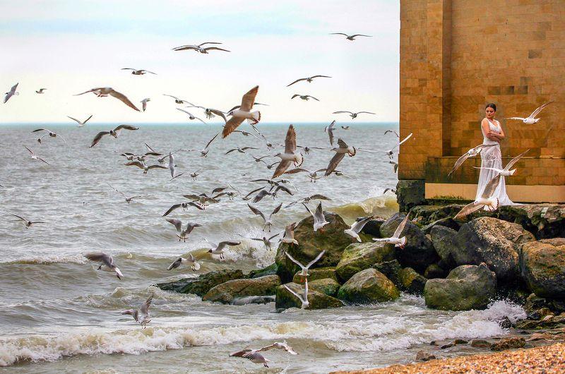 море,чайки,девушка. Девушка и чайки..photo preview