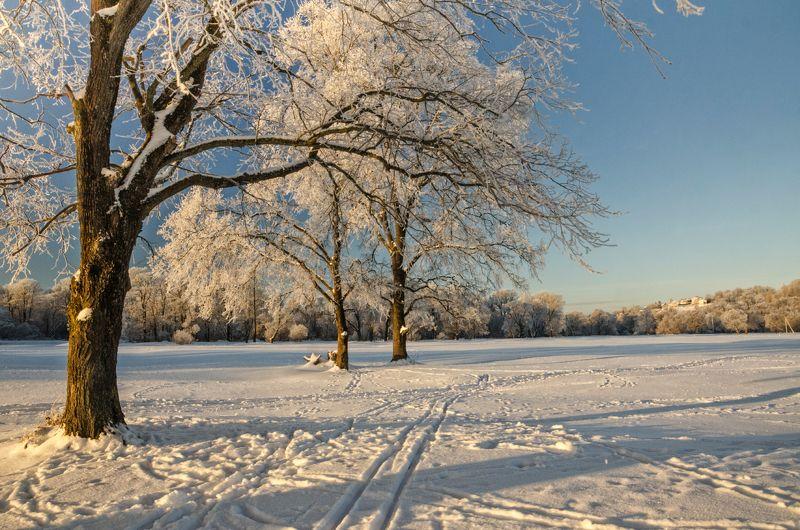 nevant60, пейзаж, красота, андреевский луг, вечер Утро на Андреевском лугуphoto preview