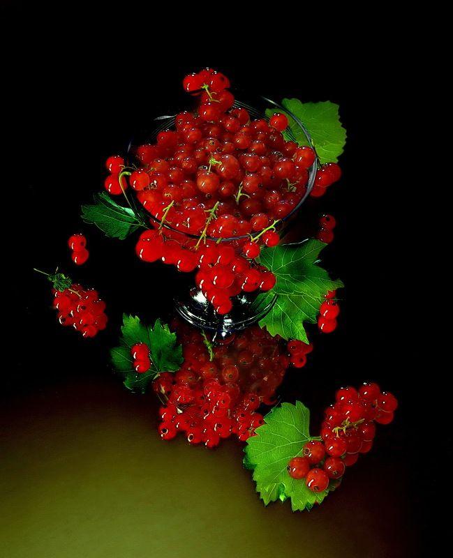 смородина ягоды витамины натюрморт Смородина на зеркале.photo preview