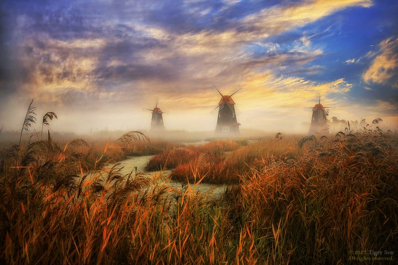 sky windmill autumn forest saltpond fog morning landscape travel cloud Incheon Korea  wonderful morningphoto preview