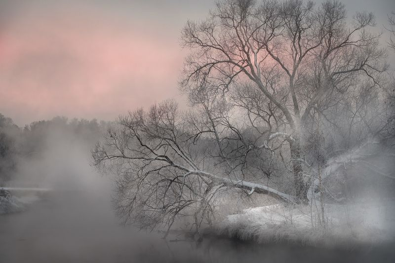 пейзаж, пехорка, река, пар, лед, снег, туман, деревья, декабрь, утро, рассвет Тепло и холодphoto preview