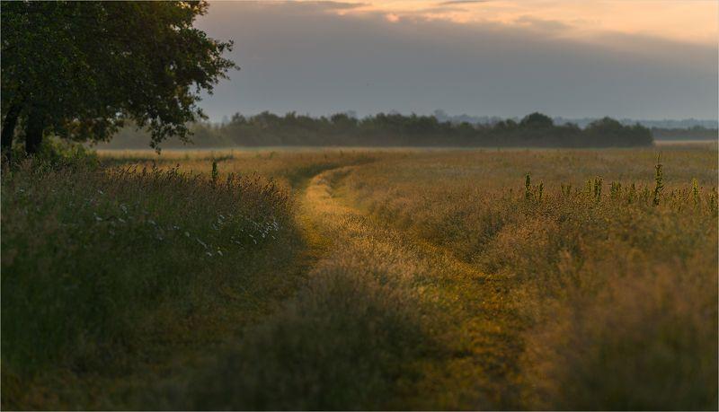 июньским утромphoto preview
