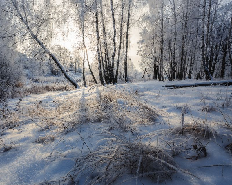 природа, пейзаж, зима, мороз ***photo preview