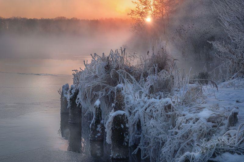 шатура, озеро, белое, пейзаж, иней, лед, снег, туман, пар, зима, изморозь, рассвет, солнце Декабрьский инейphoto preview