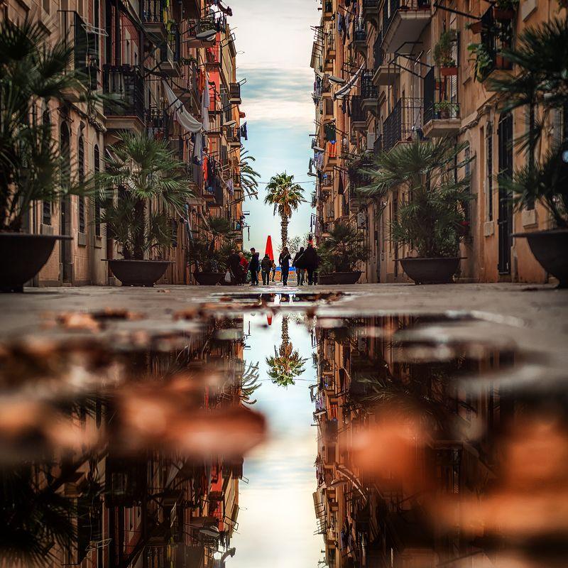#barcelona #barcelonetta #street #phototrip #festusfish \