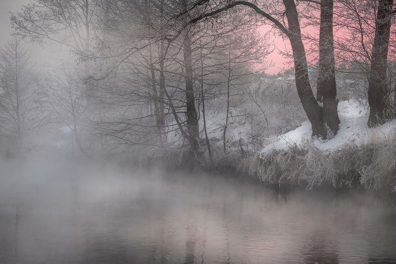 пехорка, река, пейзаж, зима, декабрь, туман, пар, иней, снег, лед, деревья Зимняя загадочностьphoto preview