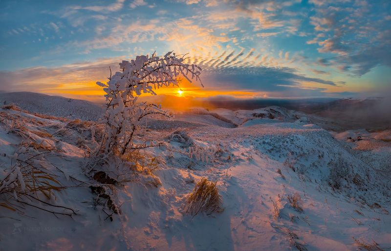 ставропольский край, фотоальбом, ставрополье, зима, ставропольская возвышенность, снег, закат, туман, трава, степь, облака, иней, камень, скала, дерево, солнце Зимний закат на горе Стрижаментphoto preview
