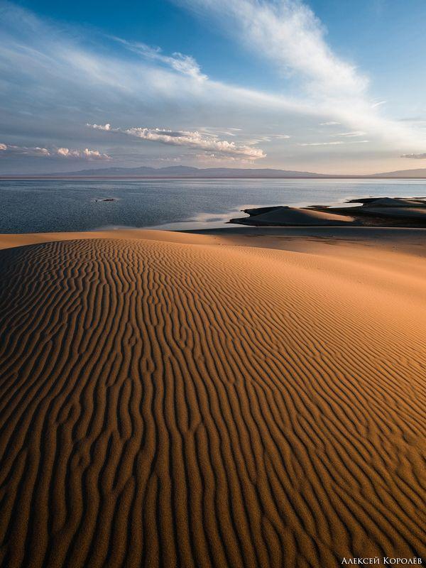 монголия, закат, пустыня, песок, озеро, природа, пейзаж, лето, mongolia, sunset, desert, sand, lake, nature, landscape, summer Золото Монголии 3photo preview