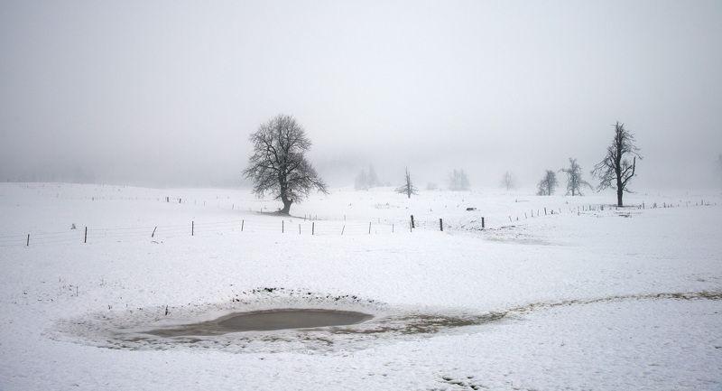 Туман. Словенияphoto preview