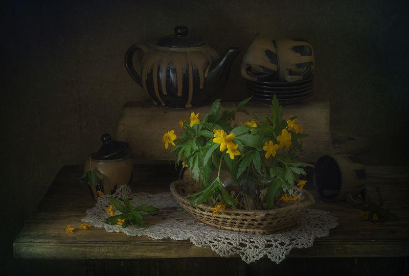 натюрморт,ветреницы,весенние цветы ***photo preview