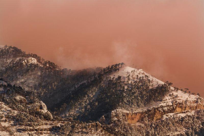 крым,горы,лес,зима,рассвет,розовый,облака,россия,пейзаж,природа,снег,фототур Розовый сонphoto preview