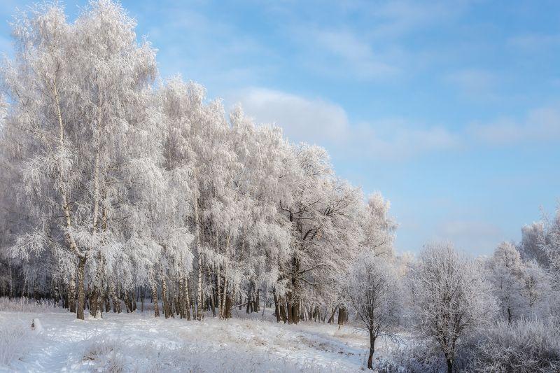 природа, зима, пейзаж, landscape, nature Зимняя сказкаphoto preview