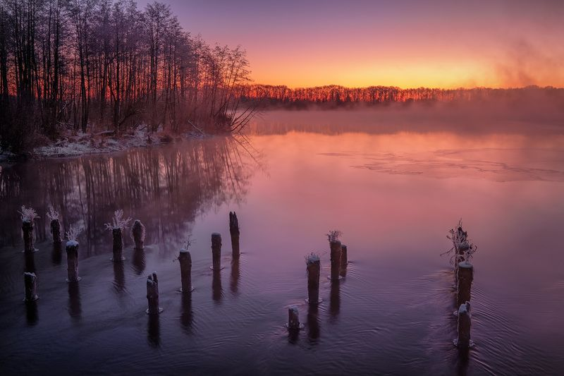 шатура, пейзаж, сваи, мост, озеро, белое, вода, рассвет, зарево, туман, лед, снег, декабрь Остатки старого мостаphoto preview