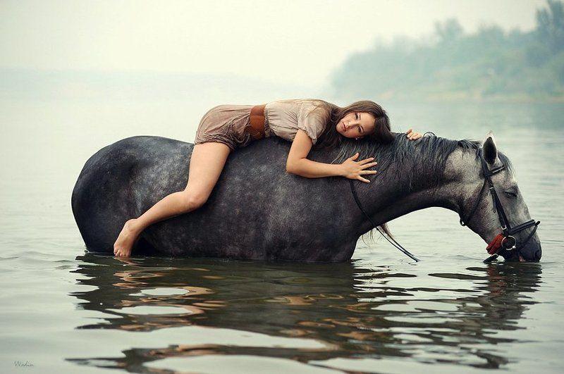 Купание пьющего коня.photo preview