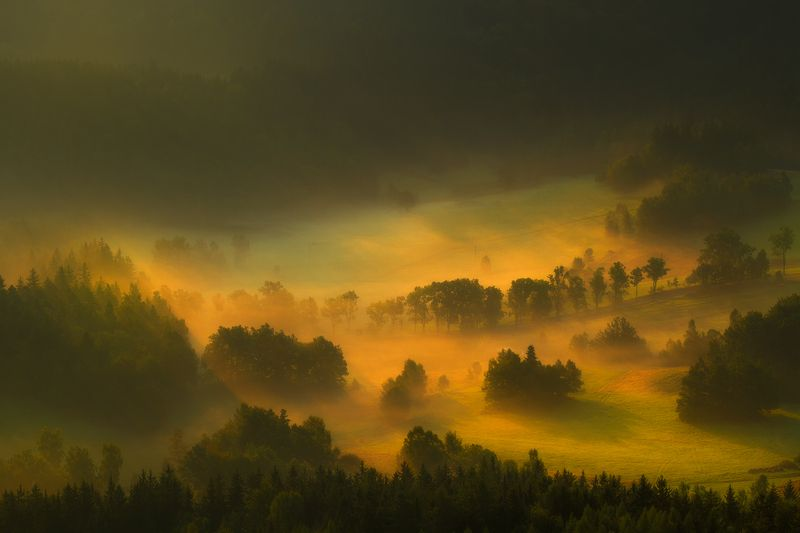 landscape,canon,mist,light,spring A Light Exists In Spring.photo preview