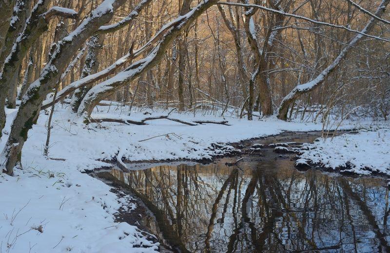 зима лес снег утро ручей Зимнее утро в лесуphoto preview