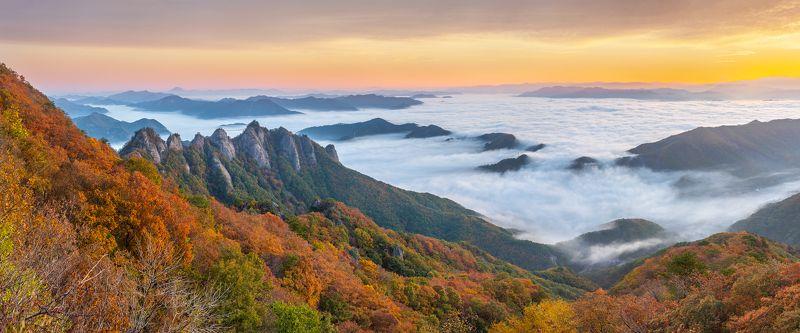 sea of clouds, autumn, clouds, mountain, korea, rock formation, sunrise Autumn of Gubongsanphoto preview