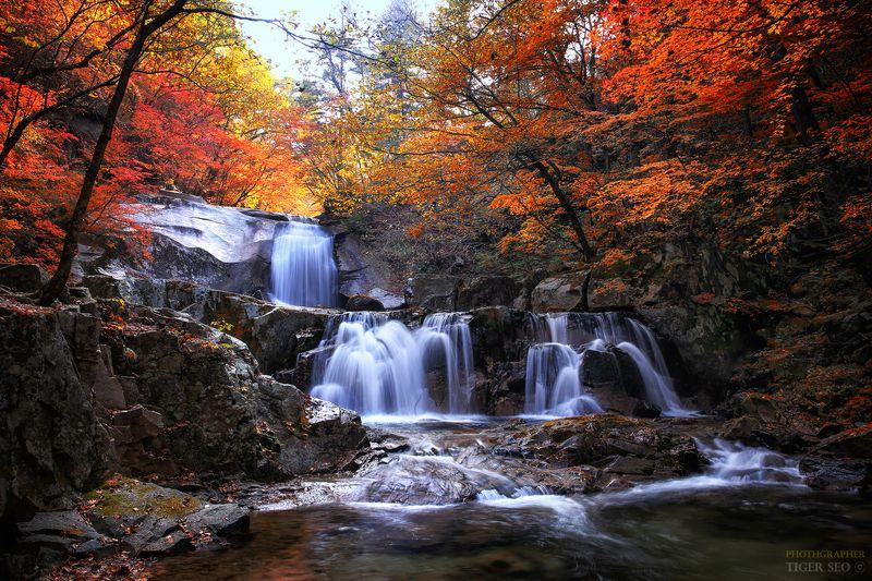 fall autumn water long_exposure tree mountain flow rock landscape Korea fallphoto preview