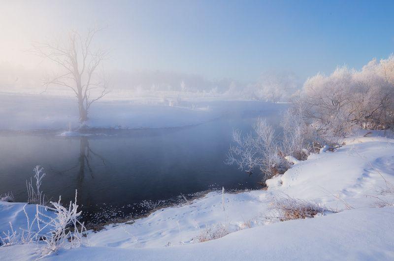 зима, утро, свет, река С Новым Годом!photo preview