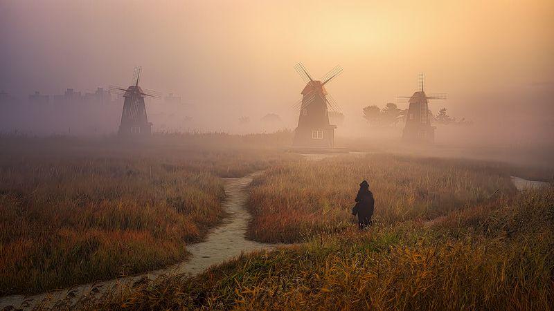 fog landscape woman windmill forest sunrise morning Korea misty woman in fogphoto preview