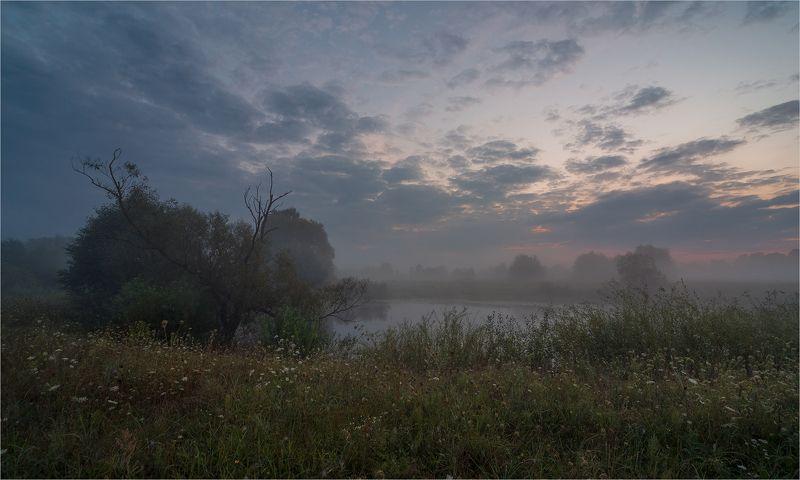 сентябрьским утром...photo preview