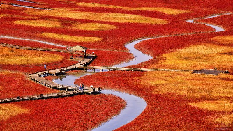 salt pond landscape Korea red stream water  salt pondphoto preview