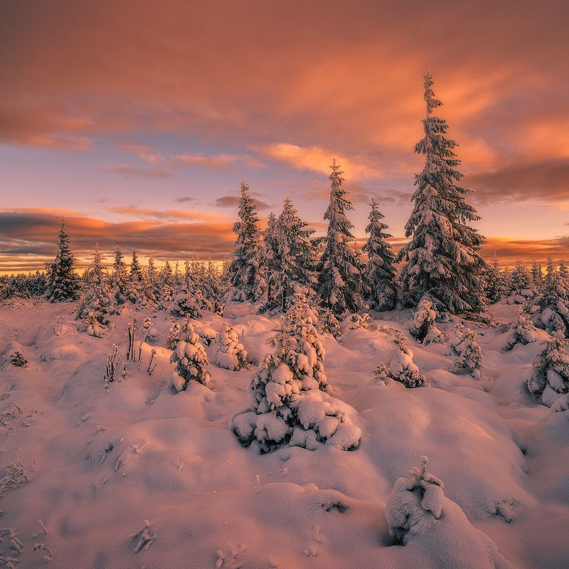 landscape,canon,sunrise,winter Nothing is so Beautiful as Winter.photo preview