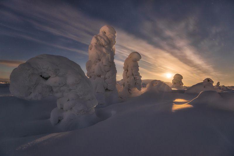 кольский Кольский. Снежные стражи.photo preview