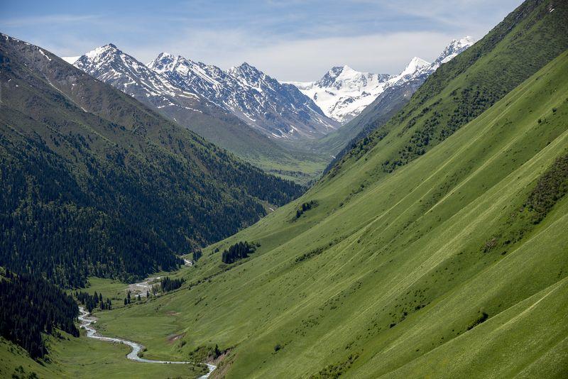 казахстан, китай, горы, джунгарский алатау, Джунгарский Алатауphoto preview