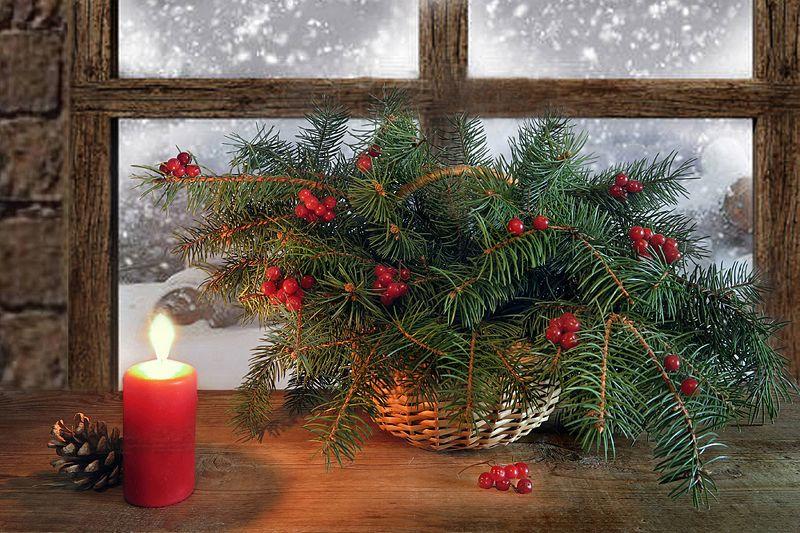 елка,калина,свеча,натюрморт С Рождеством!photo preview