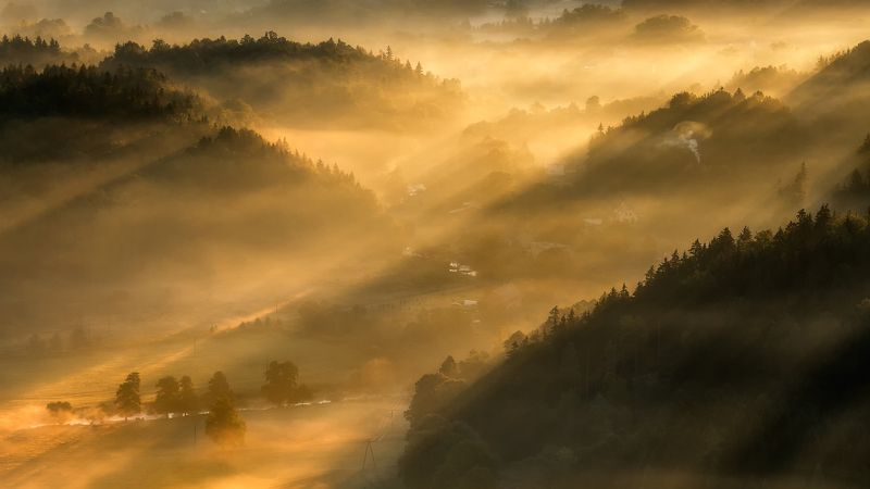 landscape,canon,mist,light,autumn Listen... The Wind is Still...photo preview