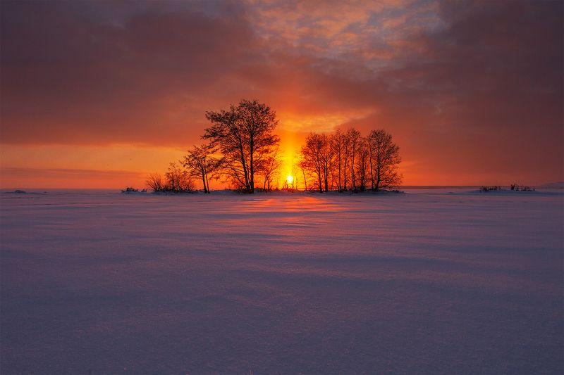январь, пейзаж, закат Январьphoto preview