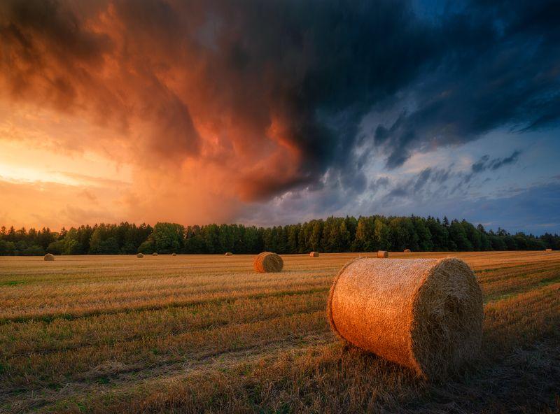 лето, вечер, закат, небо, поля Окончание летаphoto preview