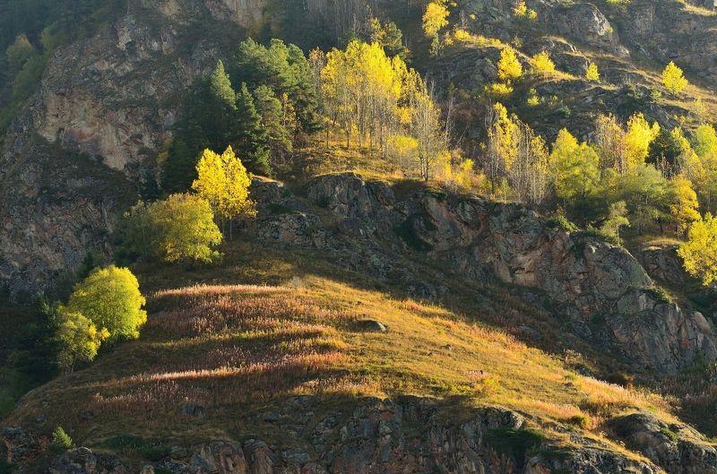 горы осень уллу-кам Осеннее утроphoto preview