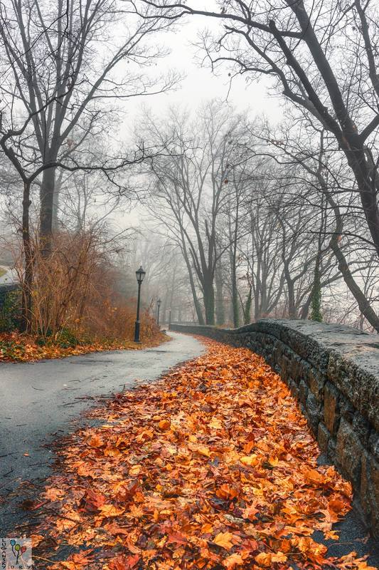 Fall in Fort Tryon Parkphoto preview