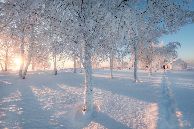 белая гора, зима, рождество, снег, мороз, метель, пурга, холод, белый, утро, рассвет Белая зимаphoto preview