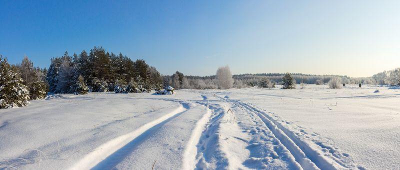усмань, сосны, снег, рождество, мороз, лыжня, лес, иней, зима, заповедник photo preview