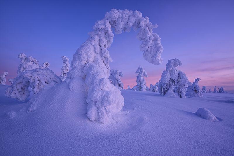 В стране снежных великанов...photo preview